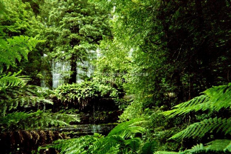 tasmanian-waterfall-c0029966dbfa4866080bb5a6d2d124ce8bc8840f