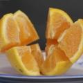 dalis-orange-6b31562d0f5f09d9ffcc98ae6b5a1d7cfdeed954