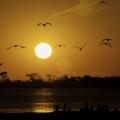 werribee-sunsets-17-002dad926ce52f0e2a23a127d3bd83fb4dd9347a